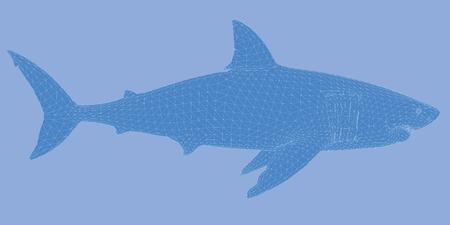 danger to life: Vector illustration of a shark from the side. Polygonal skin. 3D. Illustration