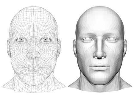 Realistic male head. Polygonal skin. Isolated. 3D. EPS 8. Vector illustration. 일러스트