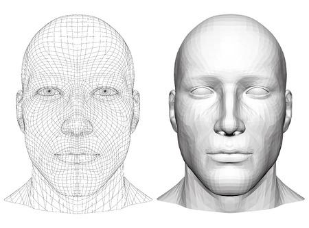 Realistic male head. Polygonal skin. Isolated. 3D. EPS 8. Vector illustration. Illustration