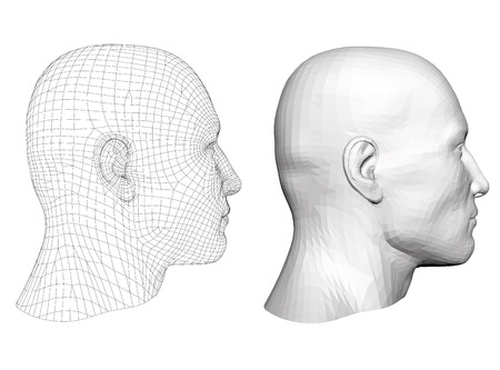 Realistic male head. Polygonal skin. Isolated. 3D. EPS 8. Vector illustration. Illustration