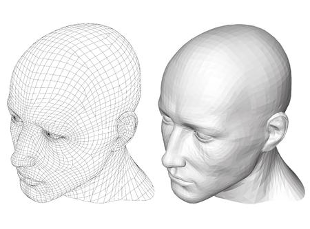 elasticity: varón cabeza realista. piel poligonal. Aislado. 3D. EPS 8. Ilustración del vector.