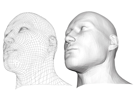 elasticity: Realistic male head. Polygonal skin. Isolated. 3D. EPS 8. Vector illustration. Illustration