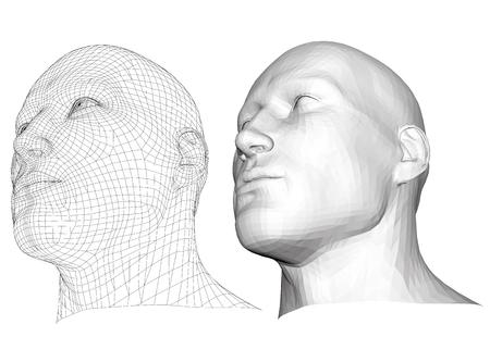 elasticidad: varón cabeza realista. piel poligonal. Aislado. 3D. EPS 8. Ilustración del vector.