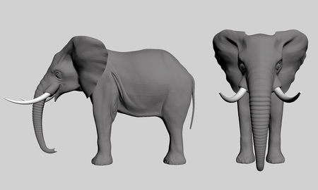 Vector illustration of an elephant polygonal side and front. 3D.