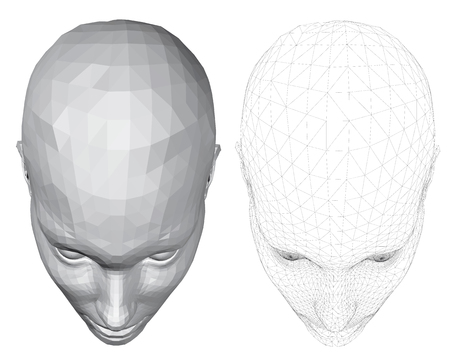 Vector illustration of 3d polygonal girl head, two kinds. Mesh coverage. EPS 8.