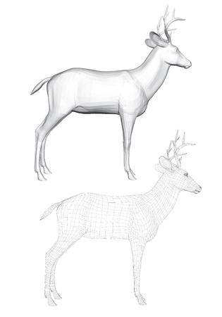 Vector illustratie van reeën, zijaanzicht. Twee herten met een veelhoekig gaas en 3D. Stock Illustratie