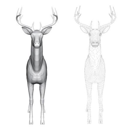 Illustrazione vettoriale di caprioli, vista frontale. Due cervi con 3D poligonale e reticolare.