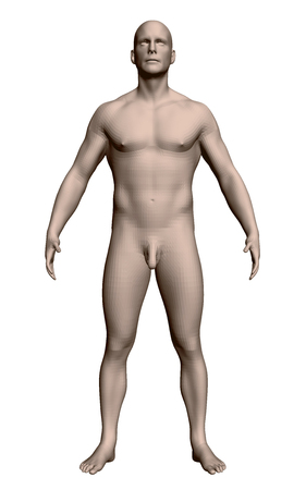 Vector illustration of a realistic man. The naked man stands in a pose with his arms and legs spread. Physiologically developed structure of a man. 3D. Front view.