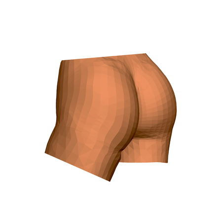 Female ass. Polygonal ass of a woman on a white background. Isolated. Vector illustration.