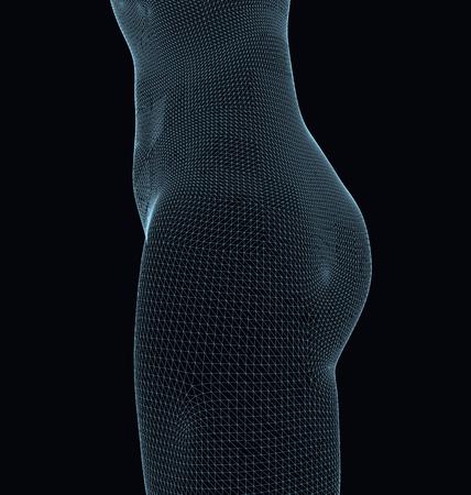 Polygonal wireframe waist girls. Side view. Round shape ass. Slim figure sports girl. Vector illustration. Illustration