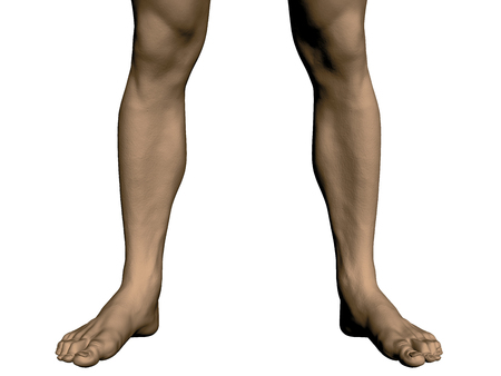 The legs of a man. Sports legs men. Realistic bare feet of a man. Vector illustration.