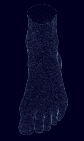 Polygonal leg. Isometric view. Polygonal leg wireframe of blue lines on a dark background. Foot men. 3D Vector illustration. Stock Illustratie