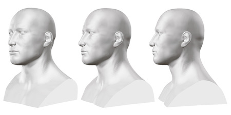 Vector set of isolated male busts of mannequins on white background. 3D. Male bust from different sides. Vector illustration Illustration
