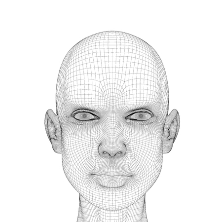 Wireframe head girls with a serious facial expression. Polygonal girl head isolated on white background. 3D. Vector illustration