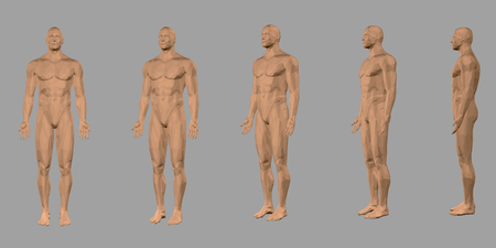 Set with a polygonal body of a man. Front view, side. 3D. Nude polygonal male model. Vector illustration Vetores