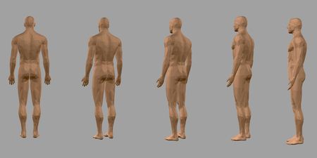 Set with a polygonal body of a man. Rear view, side. 3D. Nude polygonal male model. Vector illustration