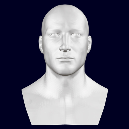 Bust of a man. Front view. 3D