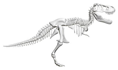 Dinosaur skeleton. Side view. 3D. Vector illustration Ilustração