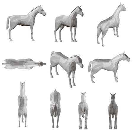 Set with a polygonal horse in different positions.