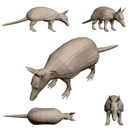Set with polygonal animal armadillo. 3D. Vector illustration.