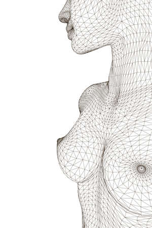 Wireframe of a girl with a topless chest. 3D. Vector illustration