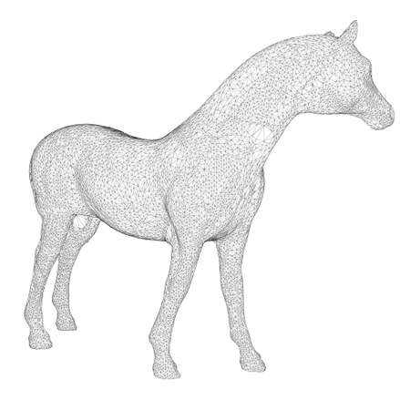 Horse frame made of black lines on a white background. Detailed horse from lines. 3D. Vector illustration