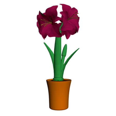 Hippeastrum in a pot isolated on white background. Burgundy flowers in a brown pot. Front view. 3D. Vector illustration