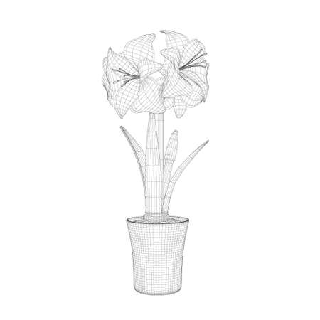 Wireframe of Hippeastrum in a pot made of black lines isolated on white background. Side view. 3D. Vector illustration
