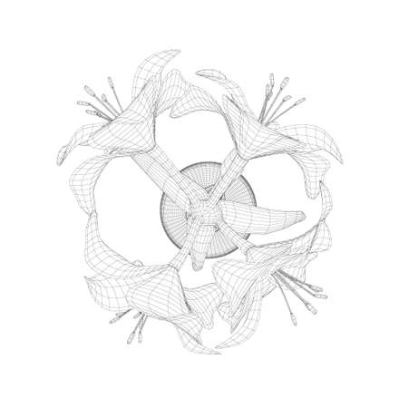 Wireframe of Hippeastrum in a pot made of black lines isolated on white background. View from above. 3D. Vector illustration