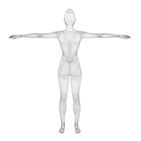Wireframe of a sports woman from black lines on a white background. Back view. 3D. Vector illustration Иллюстрация
