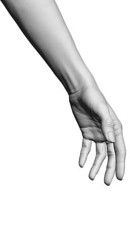 Model of a white female detailed hand. Polygonal hand of a girl. 3D. Vector illustration