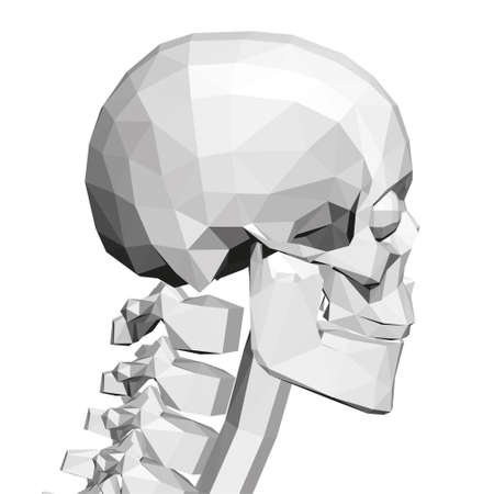 Low poly skull with human spine. Side view. 3D. Vector illustration