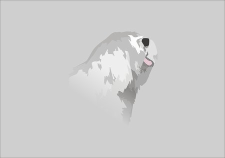 Old English Sheepdog Stock Vector - 4641768