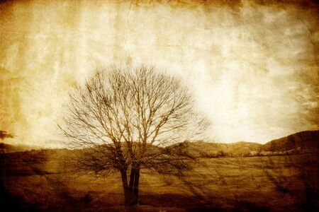 vintage old picture with alone tree 2 Stock Photo