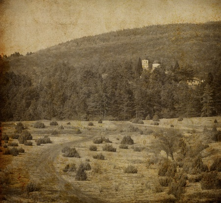 vintage monastery in deep forest grunge style picture Stock Photo - 10884633