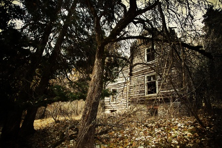 abandoned spooky house in deep mystery wood photo