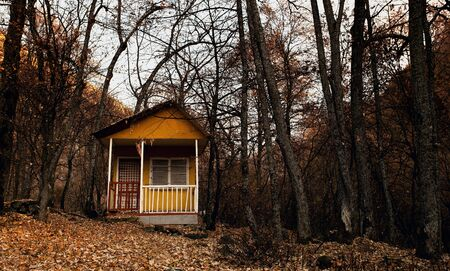 fall forest landscape with old lonely cabin shelter photo