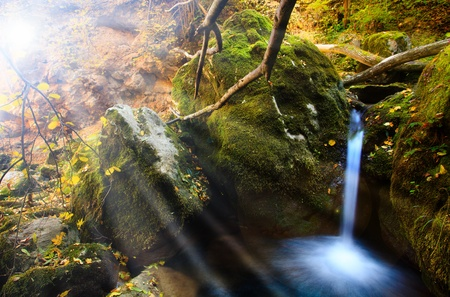 sunny forest waterfall in  fall time of the year