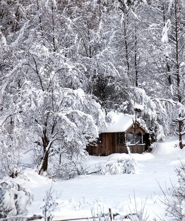 winter vertical landscape with wooden forest snow shelter photo