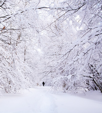 Path in a winter deep forest - trees covered with snow and a man walking in distance Stock Photo