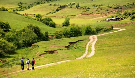 summer country road landscape with few people in walk Stockfoto