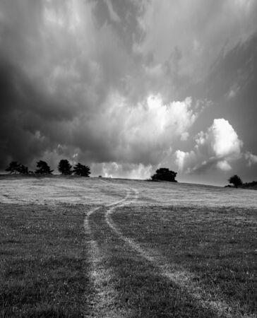 abstract black and white landscape with country road in meadow Stock Photo - 13746641