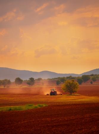 HDR pionowe krajobraz, zachód słońca nad uprawianych gruntów rolnych