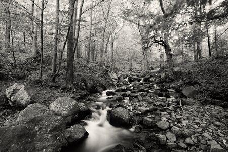 beautiful black and white bulgarian nature Stock Photo - 15755757