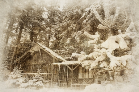 vintage winter landscape with wooden shellter in deep forest Stock Photo