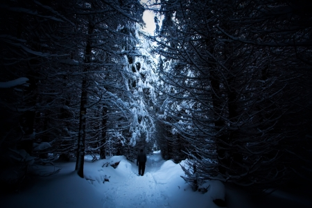 man silhouette in deep winter forest- dusk time photo