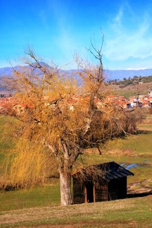 spring golden landscape with alone black wooden villa near bulgarian village  photo