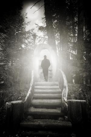 the moonlight: abstract silueta espeluznante bosque del hombre caminando trought puerta de madera Foto de archivo