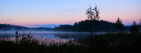 panoramic autumn landscape in forest fogy sunrising swamp photo