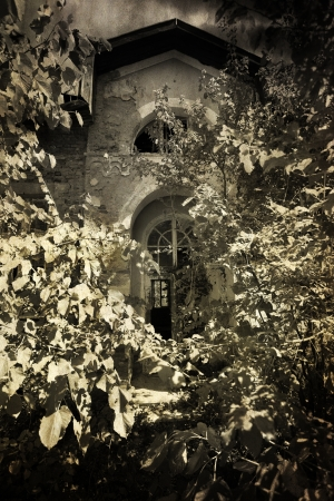 spooky old house covered with old thorns- vintage background photo